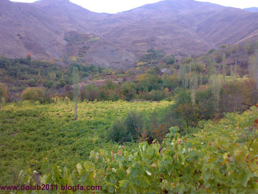 باغ نوم....روستای دولاب